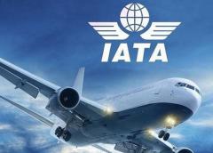 Global domestic flight demands surge in March – IATA
