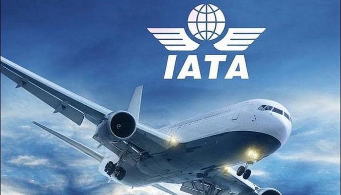 Global domestic flight