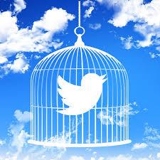 'We will keep tweeting', leaders of 27 civil societies dare FG